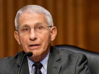 Fauci and the Media Have Serious Blood on Their Hands Over COVID