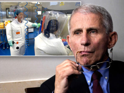 Republicans Call for Fauci to Be Fired Over Wuhan Lab Controversy