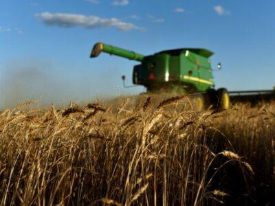 Florida Judge Blocks Biden's Debt Relief Program for Non-White Farmers